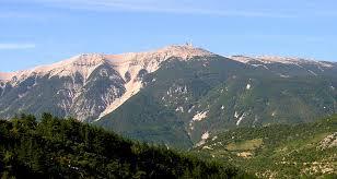 En plus de nous offrir des paysages somptueux, Le mont Ventoux présente une flore et une faune d'une diversité rare.