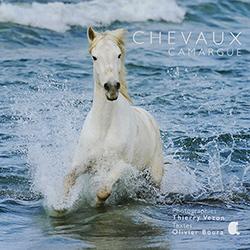 chevaux-camargue-vezon-photo